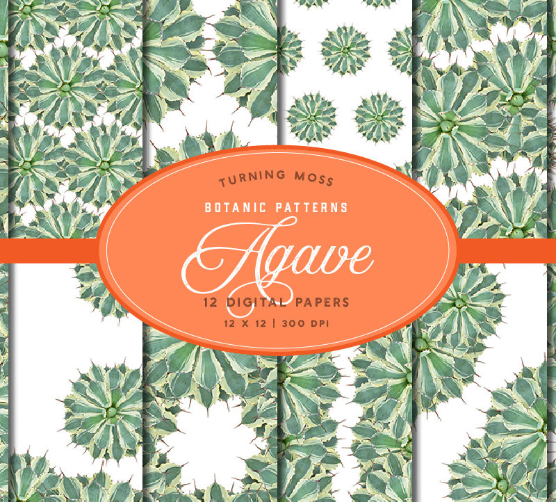 Agave Kissho Kan – Digital Paper