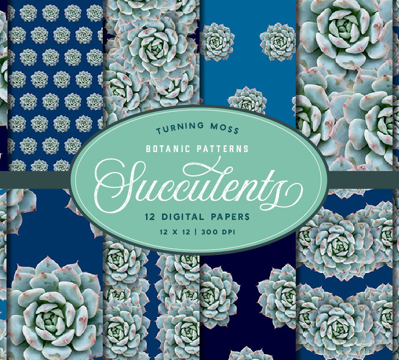 Succulent Blue – Digital Paper