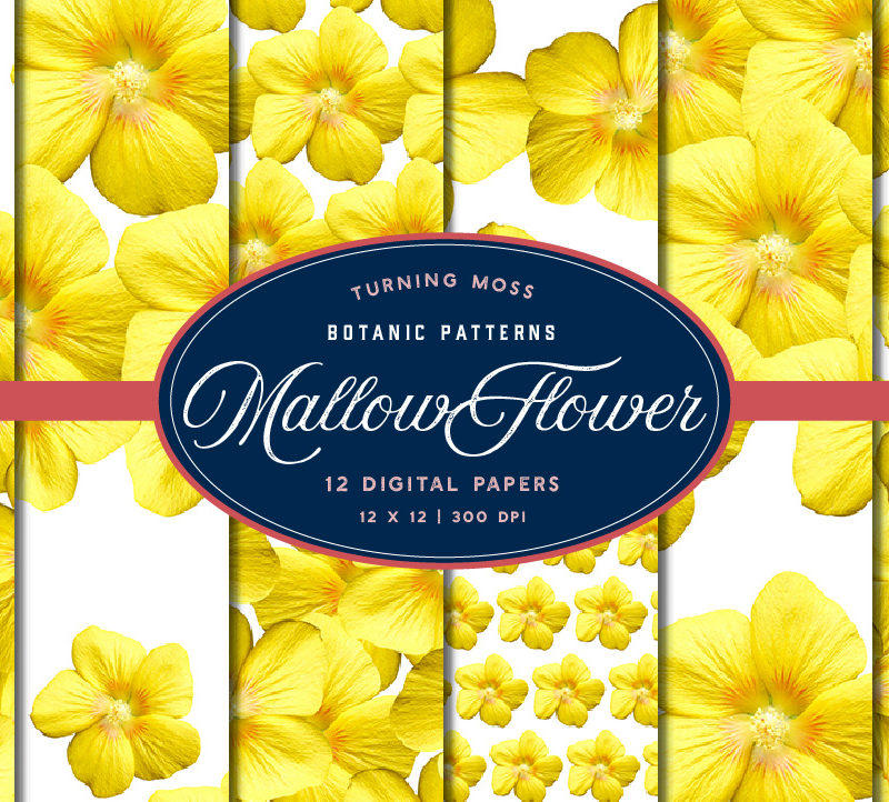 Yellow Mallow Flower – Digital Paper