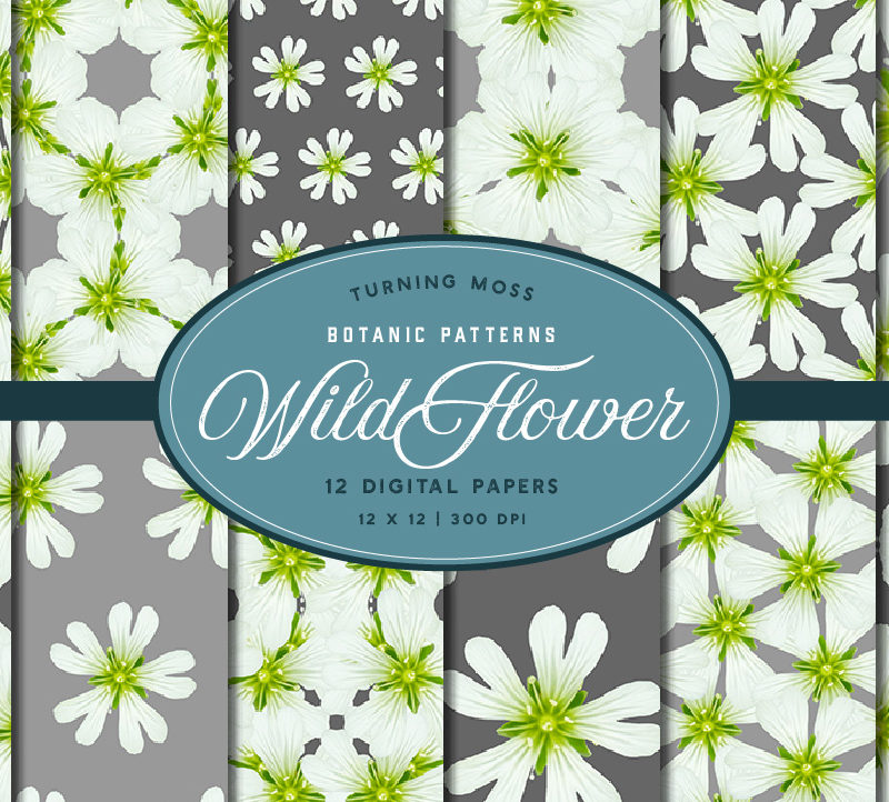 White Wild Flower – Digital Paper